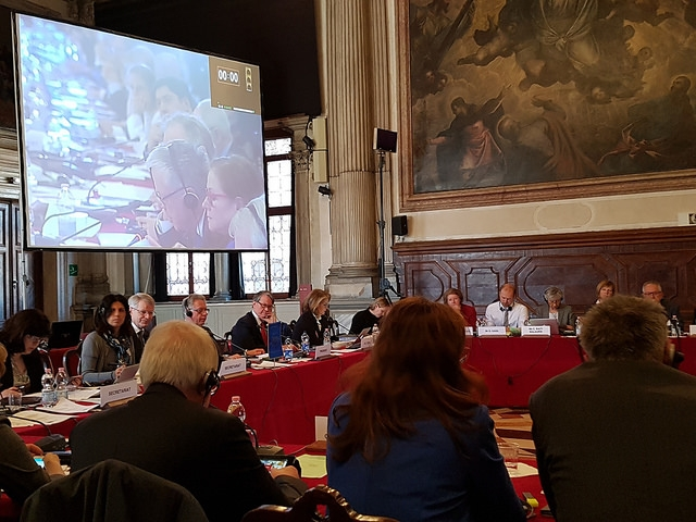 Chair of the Congress Monitoring Committee addresses the Venice Commission on the Situation in Turkey